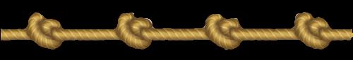 RingMaster/RingMaster/Assets/Textures/rope 1.png